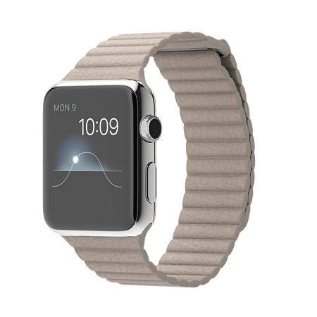 Apple Watch 42mmステンレススチールケースとストーンレザーループ MJ432J/A【M】 MJ442J/A【L】